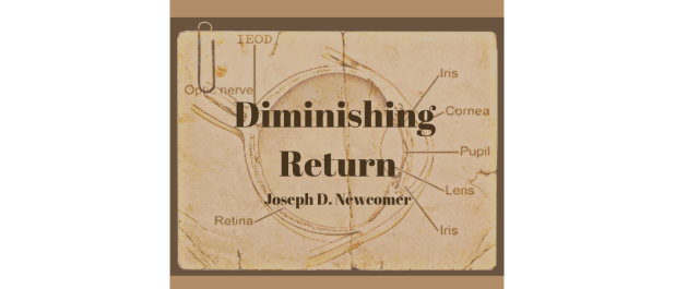 Diminishing Return by Joseph D Newcomer